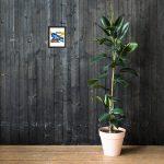 enhanced-matte-paper-framed-poster-in-black-8×10-lifestyle-2-604b50da30c54.jpg